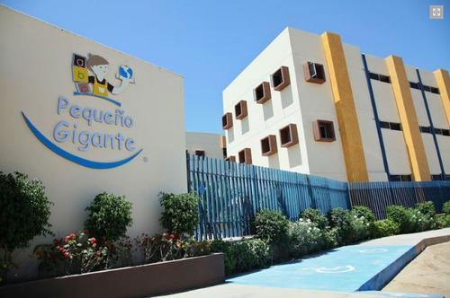 peque241o gigante mi escuela culiacan
